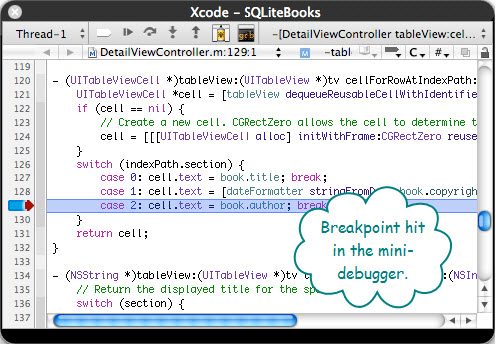 Figure 5. The Mini Debugger Window of Xcode