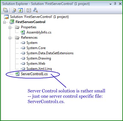 Figure 2. The Server Control in the Solution Explorer